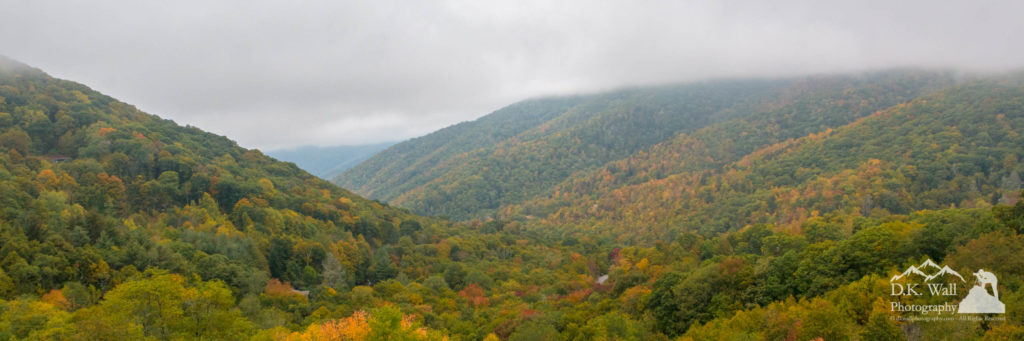 Soco Gap is shrouded in clouds, but the colors are alive.