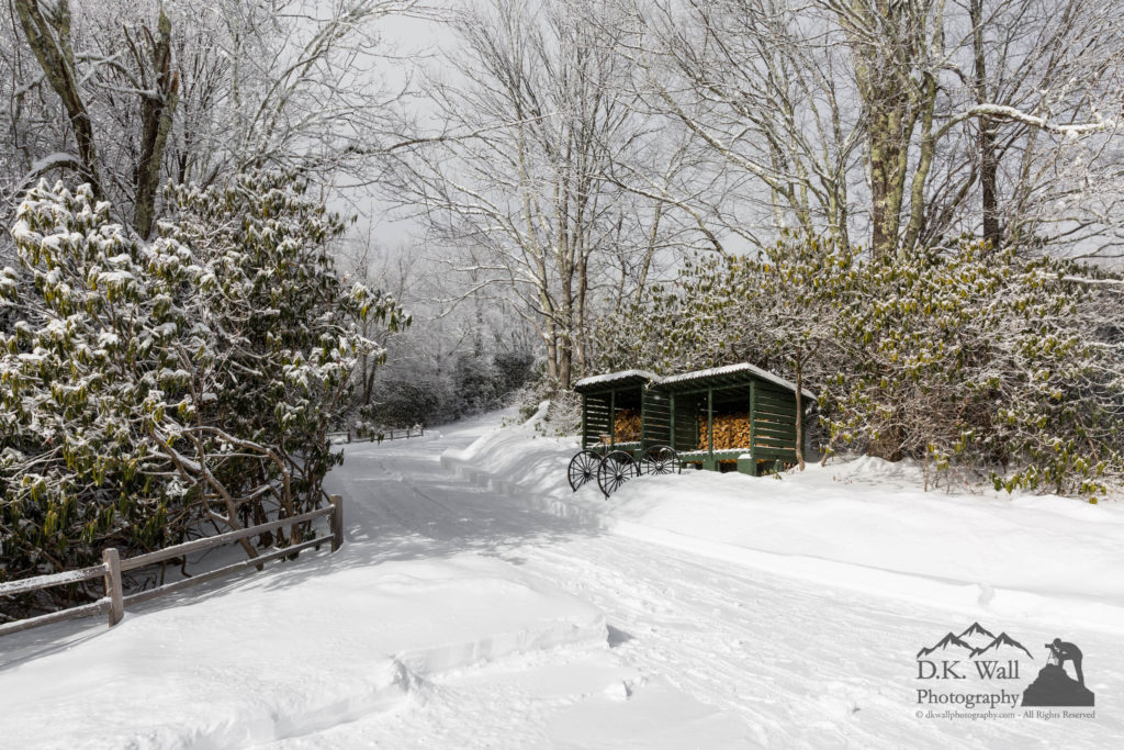 A cleared driveway and path to the firewood bins.