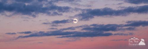 moonrise in pink sky