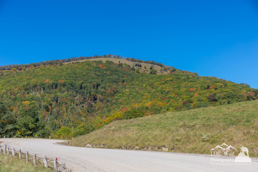 Beginning Fall Colors Hemphill Bald - October 10 2016