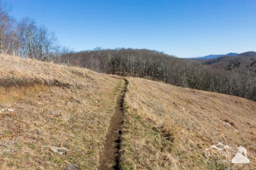 An empty trail beckons winter hiking.