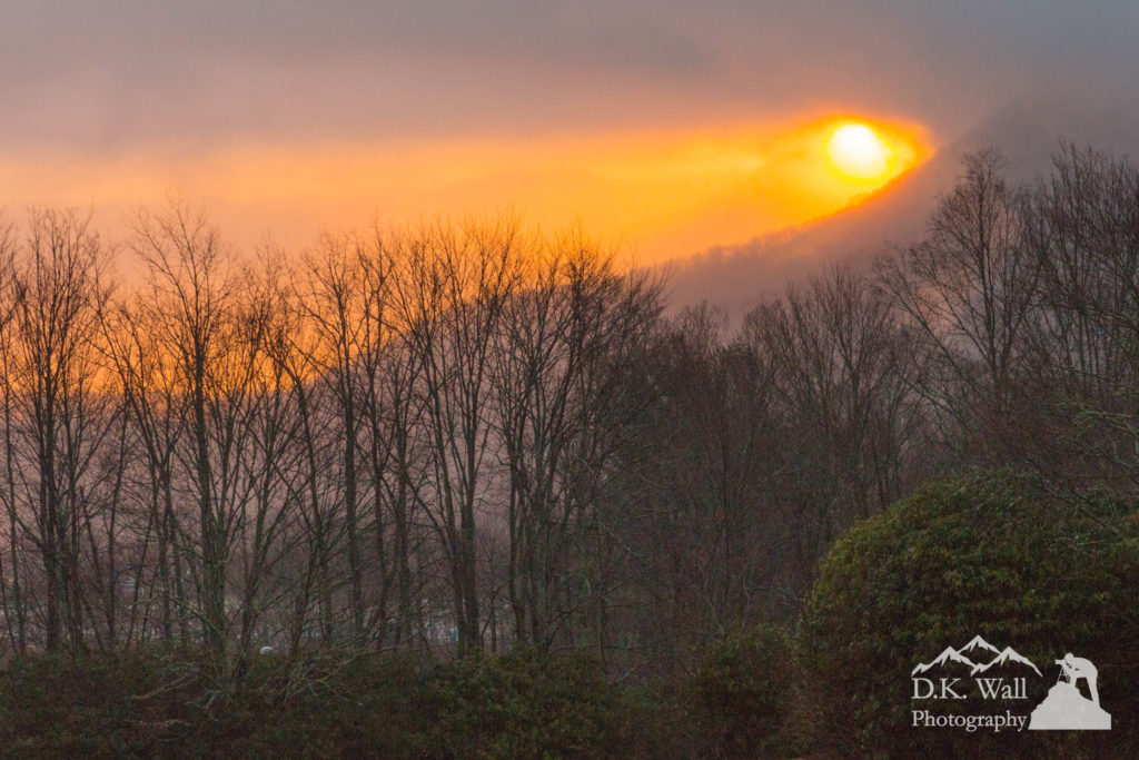 Misty Morning Sunrise - January 12 2017