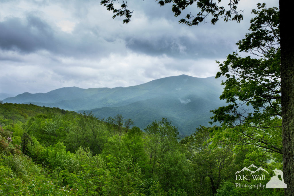 Blue Ridge Parkway Rainy Days