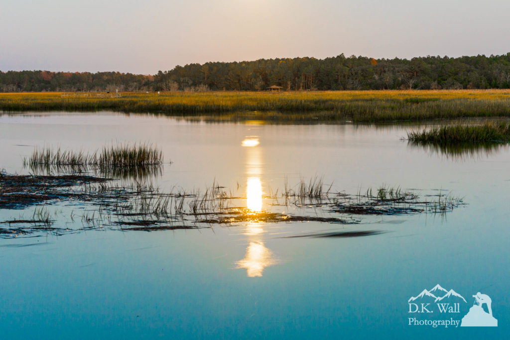 Moonlight on the marsh at Huntington Beach State Park