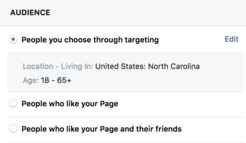 Screen shot of audience targeting for a Facebook advertisement