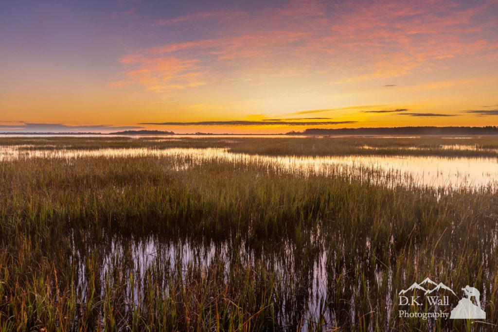 A gorgeous sunrise in the salt marsh.
