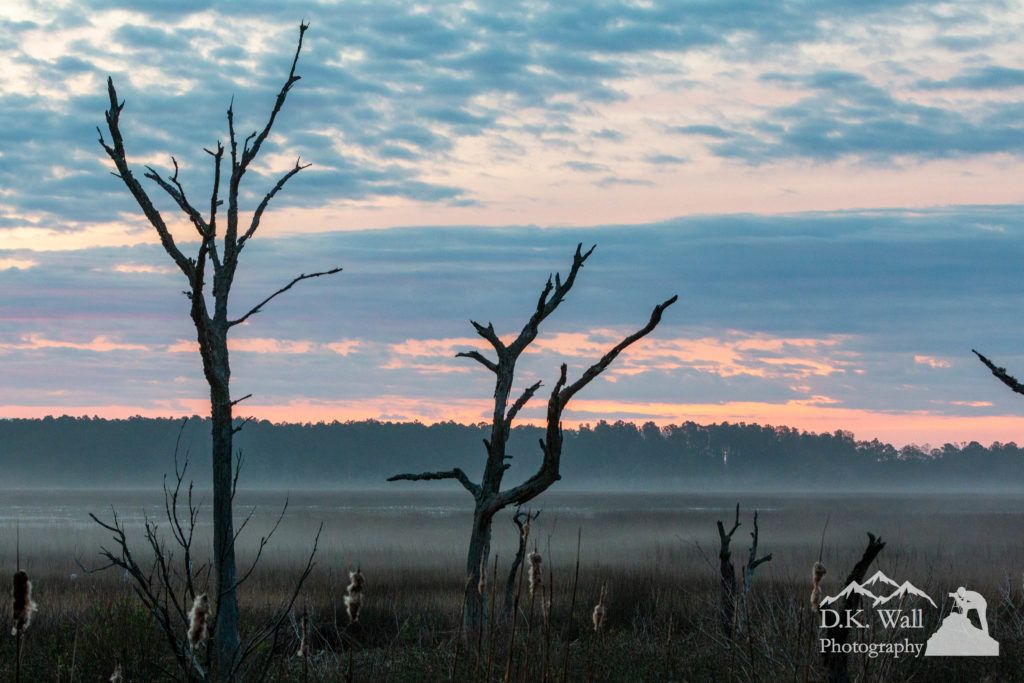 Sunrise over the salt marsh of Murrells Inlet. Huntington Beach State Park in the background.