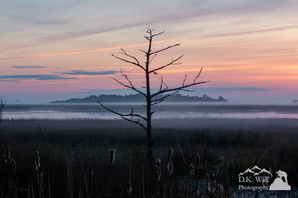Mist floating across the salt marsh and Drunken Jack Island at sunrise. Not a bad view while waiting on the dogs in the backyard.