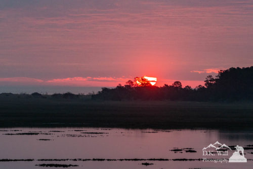The globe of the rising sun peeking over Huntington Beach State Park.
